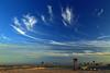Sky brush (Robyn Hooz) Tags: cirri cirrus cielo sky bruch pennellata palme palm sabbia sand blue polarizzatore freedom sottomarina venezia