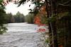 Tahquamenon River (Larry Haines) Tags: tahquamenonupperfalls michigan upperpeninsula tahquamenonstatepark river water trees fall color