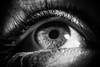 Nikkor 105 mm F4 macro AIS : test shots on Elodie's eyes : Nikon D810 (Benjamin Ballande) Tags: nikkor 105 mm f4 macro ais test shots elodies eyes nikon d810