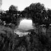 In Canyons 164 (noahbw) Tags: brycecanyon d5000 nikon utah abstract arch arches autumn blackwhite blackandwhite bw canyon cliffs desert erosion hills horizon landscape monochrome natural noahbw rock square stone trees