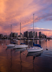 _DSC8671-3 (exceptionaleye) Tags: availablelight a6000 sandiego sandiegobay california southerncalifornia exceptionaleye variotessar16354za zeiss za color sunset sony sonyphotographing sonya6000 sonyilce6000 sailboat sailboats marina resort vacation ngc pinkclouds reflection reflections spanishlandingpark downtownsandiego