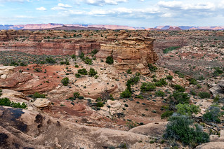 A View in the Needles District of Canyonlands