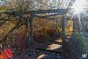 Arboretum HDR+DxOFP LM8+Z18 1001984 (mich53 - thank you for your comments and 4M view) Tags: automne autumn télémètre telémetro rangefinder france valdoise larocheguyon saisons 4autumn leicam8 zeissdistagont418zm arbres feuilles feuillages foliages arboretum rayons lumières sunlight hdr