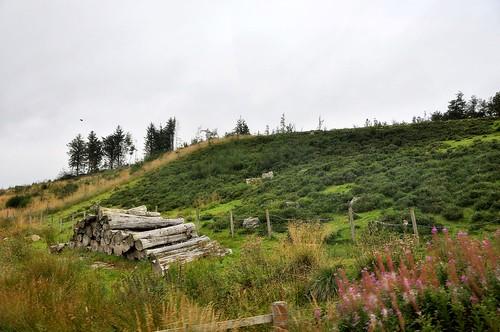 Fahrt durch die Highlands bei Glenshee