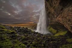 Seljalandsfoss (« LenikLAS ») Tags: leniklas canon canoneos6d tamron tamron2875 iceland island ocean oceán october seljalandsfoss south water waterfalls waserfälle sunrise rock