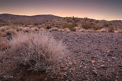 Lunatic's asylum (Ramen Saha) Tags: sunset sunsetcolors joshuatreenationalpark nationalpark desert manuallyblendedhdr ramensaha nothing