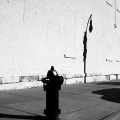 chasing shadows (humbletree) Tags: madisonwisconsin blackfriday statestreet minolta3570f35