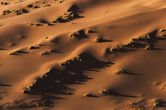 melt and flow (timsnell) Tags: aerial africa brown desert dunes golden namibia orange red sossusvlei sand sanddunes shadows smooth