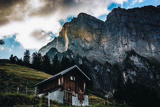 Standing Strong - Swiss Alps