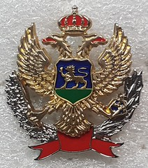 Montenegro Police (Sin_15) Tags: montenegro insignia police cap beret badge hat law enforcement emblem