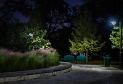 Happy Bench Monday (Jims_photos) Tags: texas trees outdoor outside oldmemories adobelightroom adobephotoshop shadows daytime happybenchmonday jimallen jimsphotos jimsphotoswimberleytexas lightroom landscape benchmonday nopeople nikond750 nightphotos nightshot newbraunfelstexas