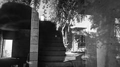 scottsdale 00285 (m.r. nelson) Tags: scottsdale az arizona 20017southwest usa mrnelson marknelson markinazstreetphotography america urbanmarkinaz blackwhite bw monochrome blackandwhite bwnewtopographic urbanlandscape artphotography