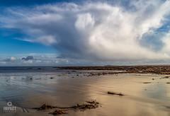 Shoreline reflections (Impact Imagz) Tags: clouds cloudscapes cloudsstormssunsetssunrises weather sea seascape seaweed shoreline shore seashore vatiskerbeach vatisker isleoflewis outerhebrides westernisles scotland visitscotland sand bluesky