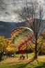 balloon landing in a valley yard (maryannenelson) Tags: colorado durango fall balloonrally hotairballoons autumn landscape sky