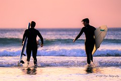 San Diego Life 6 (Will.Mak) Tags: surf surfer waves surfboard surfphotography surfinglife surflife ocean swell surfers surftrip bodyboarding surfsup sup beachlife sandiego sd lajolla sandiegoliving mysdphoto sandiegoca pacificbeach delmar cali allthingssd surflicious fe100400mmf4556gmoss sonyilce7rm3 sony ilce7rm3 a7riii wave sunset sea beach sky water sand
