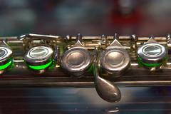 Musical Instruments 2017.11.05.19.35.43 (Jeff®) Tags: jeff® j3ffr3y copyright©byjeffreytaipale flute macromondays memberschoicemusicalinstruments