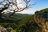 Kanakia Forest, Salamina Greece (grgppmchl) Tags: pines sky green wideangle kanakia salamina rock