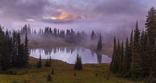 Foggy Morning at Tipsoo Lake, Mt Rainier NP, WA