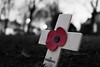 'Lest we Forget' (Jamess Photography) Tags: war red street leeds respect soldiers ww2 lest we forget uk city remembrance