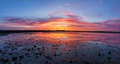 Panoramic sunset over Belhaven Bay (MilesGrayPhotography (AnimalsBeforeHumans)) Tags: 1635 fe1635mm sonyfe1635mmf4zaoss autumn a7ii belhavenbay belhaven eastlothian britain bridge dusk europe evening bridgetonowhere fe f4 glow iconic ilce7m2 landscape lens lothians nighfall outdoors oss ocean photography photo panorama panoramic pano ptgui tranquil reflections rocks river scotland scenic scottish scottishlandscapephotography sky skyline sunset sunlight sonya7ii sony sonyflickraward town twilight uk unitedkingdom village waterscape wide water bielwater zeiss za