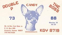 Foxy Printer: Double P, The Boss & Candy - Emporia, Kansas (73sand88s by Cardboard America) Tags: foxyprinter qsl qslcard cbradio cb vintage kansas dog