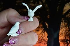 Aschenputtel  /// Cinderella---- Finger - tips ---- (Pixelchen1) Tags: nikon5500 nikon105mmf28 macro kreativ mypersonalmonday myworks fingertips