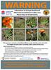 Orange hawkweed warning sign (Environment + Heritage NSW) Tags: weed weedcontrol weedprogram weedmanagement hawkweed huntinghawkweed kosciuszkonationalpark kosciuszko