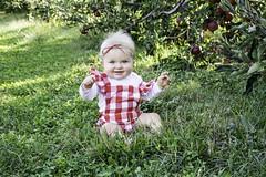 Apple Picking at Geig's orchard (meganleebuchanan) Tags: people orchard apple picking fall travel destination family adventure medina ohio foliage tourism lifestyle portrait