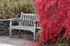 Ein gemütliches Wochenende für Euch Alle - Enjoy your Weekend (Sockenhummel) Tags: bank britzergarten grünberlin herbst rosengarten bench fall autumn park ahorn rot busch canadischerahorn sitzbank sitzplatz berlin fuji x30 fujix30