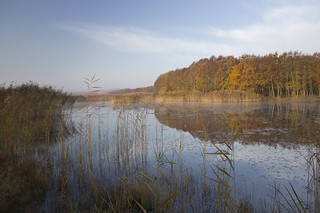 Autumn morning and mirror of the earth