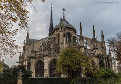 Flying Buttresses, Notre-Dame (elliott845) Tags: notredamedeparis paris france europe notredame cathedral flyingbuttress