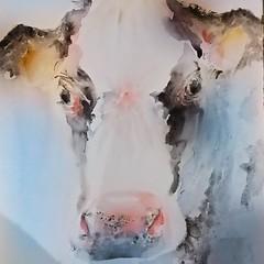 Möö! (sushipulla) Tags: cows cow animalart portrait watercolours watercolors painting