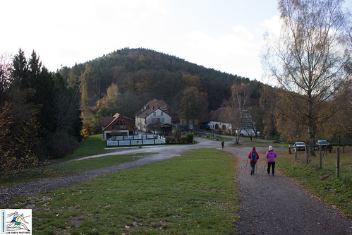 2017-11-19 11-17-33 Col du Litschhof - Wingen.jpg