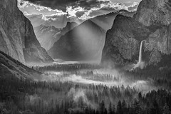 Yosemite Morning Sun Rays (Jeffrey Sullivan) Tags: yosemite national park yosemitenationalpark yosemitevalley yosemitevillage mariposacounty california usa nature landscape canon photo copyright 2017 jeff sullivan may allrightsreserved wwwjeffsullivanphotographycom blackandwhite silhouette backlight