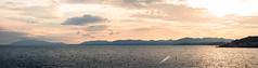 Famous Sunset (campra) Tags: japan shimane matsue 島根 松江 shinji lake sunset dusk 宍道湖 pink sky
