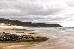 Squeaky Beach Rock (gecko47) Tags: headland dunes rock mussels shellfish bivalves waves seabirds seascape squeakybeach wilsonspromentory gippsland victoria clouds