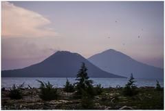 in orbit around Krakatoa (i.v.a.n.k.a) Tags: ocean ivanadorn ivanahesova sonyalpha krakatoa krakatau island rakata volcanoes twilight light birds volcano verlatenisland verlaten