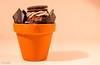 329 ~ 365 (BGDL) Tags: lightroomcc nikond7000 bgdl high5~365 niftyfifty afsnikkor50mm118g flowerpot chocolatemuffin cream oreobiscuit itsinthepot