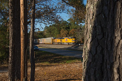Triclops through the Trees (ajketh) Tags: up union pacific emd sd60m ge general electric ac44cw flag triceps threewindow trees pine carlisle santuc sc south carolina highway wline 2330 28t freight train railroad autorack uncle sam bmw bavarian motor works 6750