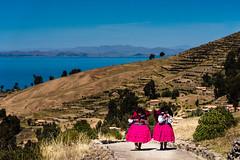 Puno region, Peru (David Ducoin) Tags: amantani america aymara ducoindavid island landscape native peru puno quechua southamerica titicaca twoo women