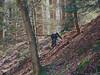 Holding on to Lightbeams (Cairn 111) Tags: boy teenboy hike ravine ohiostatepark backlight