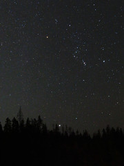 Orion and Sirius over forest (bencbright) Tags: astrophoto orion orionnebula sirius star sx60 canonsx60 landscape idaho