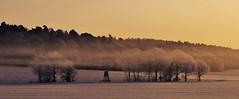 Guten Morgen (Uli He - Fotofee) Tags: ulrike ulrikehe uli ulihe ulrikehergert hergert nebel sonne sonnenaufgang plätzer burghaun schnee eis kalt kälte positiv positivegedanken offenesauge leben