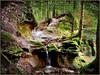 Gefelse (almresi1) Tags: rocks felsen stone gestein river bach waterfall wasserfall wald forest trees bäume laub leaves welzheim einsundalles rudersberg michelau germany november moos nature landscape wood