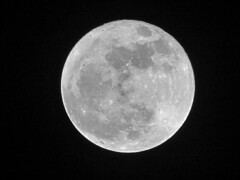 """Full Cold Moon - 12.03.2017 (spacemike) Tags: moon luna lunar waxingmoon space astronomy astrophotography crater craters mare sky nightsky charlotte northcarolina charlottenc charlottenorthcarolina spacemike astromike fullmoon waningmoon """"waning gibbous"""" waninggibbousmoon gibbousmoon """"cold moon"""" """"full cold full 2017 december supermoon"""