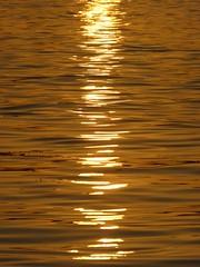 Liquid Gold (Aidan McRae Thomson) Tags: nile river egypt sunset water light