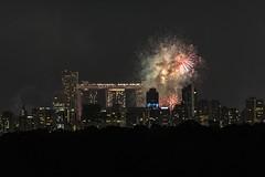 Urban Nebulae (martin.chua) Tags: sony a7s tamron 150600 singapore bangkit bukitpanjang fireworks singaporenationalday2017