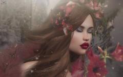 Sia~Scent of December.... (Skip Staheli *FULLY BOOKED*) Tags: skipstaheli secondlife sl siatutti winter snow snowflakes flowers red christmas holidays closedeyes fur dreamy digitalpainting virtualworld avatar sweet