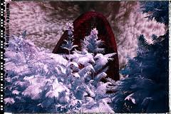 Agbar i les fases del cicle hidrològic.           Fase #2-Condensació (Ar@lee) Tags: barcelonacatalunya airelibre torreagbar jeannouvel clot bordeparafotos construcción d50 espectrecomplet exteriors fullspectrum filtre720nm fotografíainfraroja photographyinfrared ir nikond50 paisajeurbano arquitectura red clouds sky tree blue