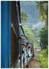 Congregation (Gurugo) Tags: srilanka train comboio railroad caminhodeferro jungle selva árvores trees people pessoas viagem trip journey green verde utata:project=tw602